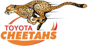 Rugby Noceto ospita i Cheetahs Rugby